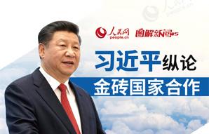 习近平纵论金砖国度协作