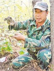 白开国:我的林子越来越密