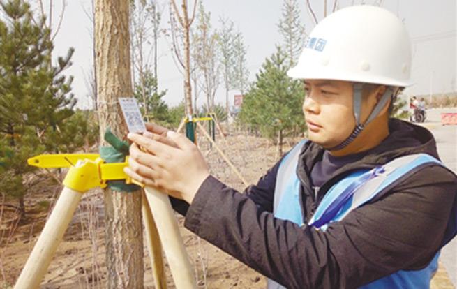 实行植树任务 共建优美中国