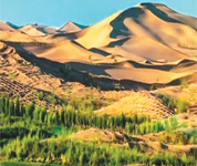 库布其:农牧民治沙走上致富路