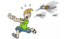 """为什么有人特""""招蚊子""""?教你5招驱蚊大法"""