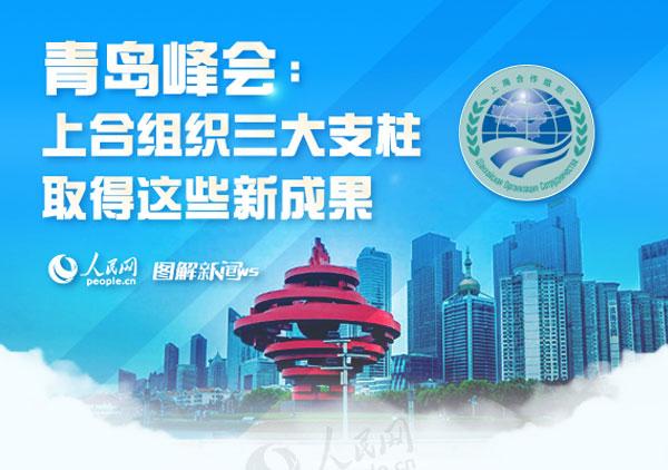 青岛峰会:上合组织三大支柱取得这些新成果