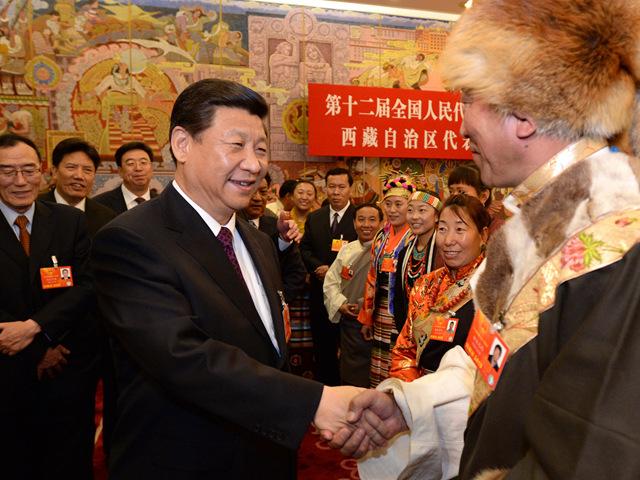 西藏拉萨市城关区纳金乡塔玛村党支部第一书记格桑卓嘎