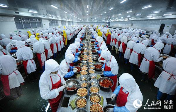 潜江一小龙虾生产加工车间,工人正忙着剥虾。