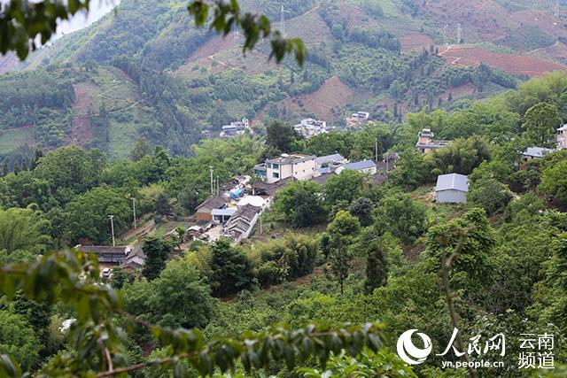 雨后的百花岭村