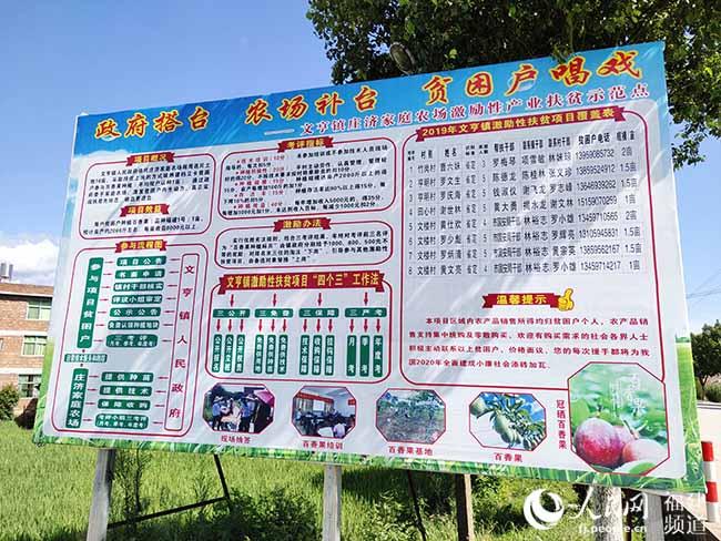 文亨镇庄济家庭农场通过激励性产业扶贫项目促增收。