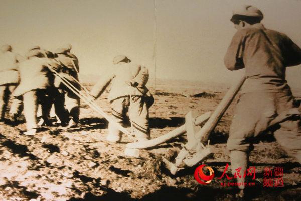 石河子建设初期兵团战士在犁地