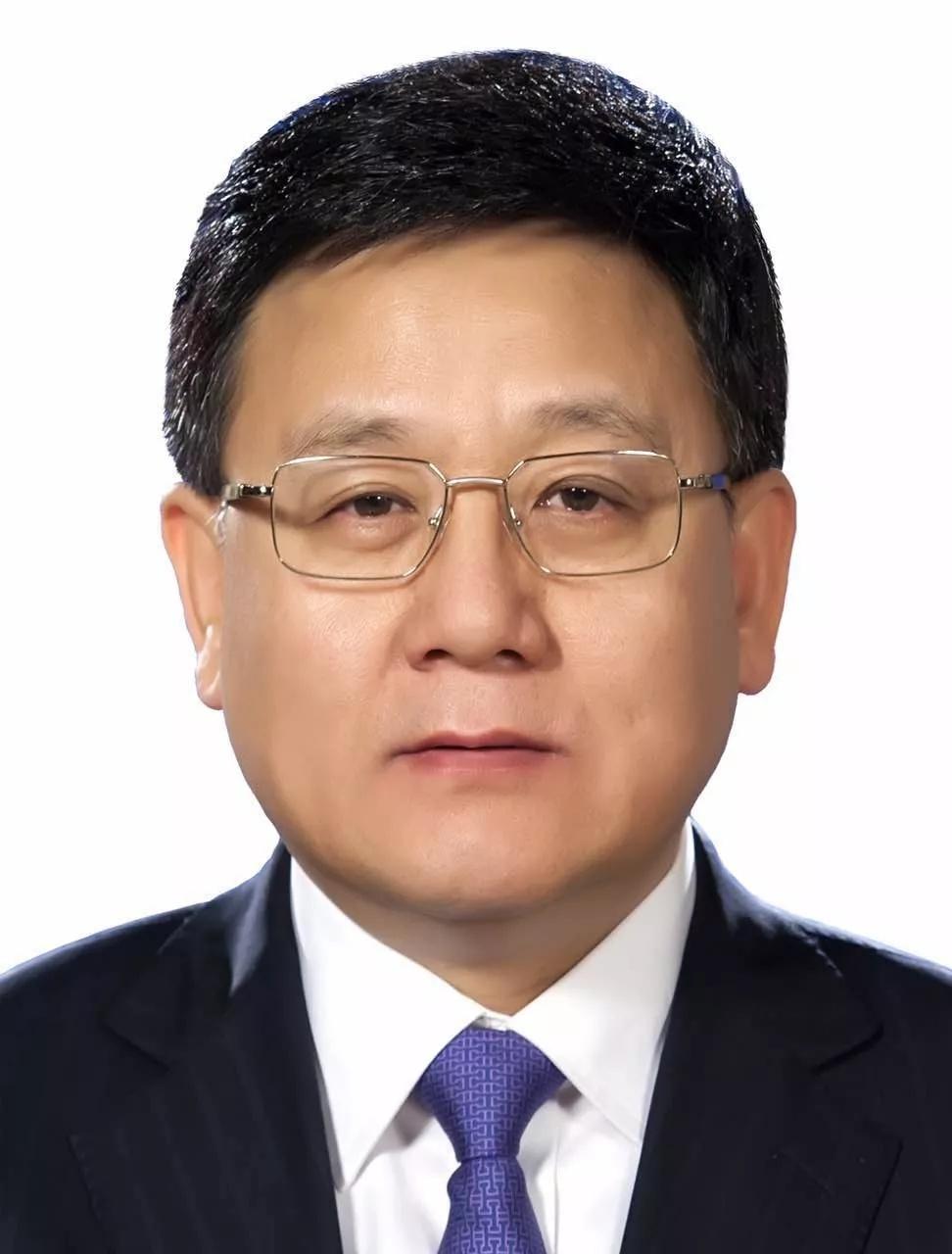 中央批准王贺胜同志任湖北省委委员、常委