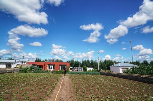 百事娱乐:庭院种出小头蒜,五三村脱贫
