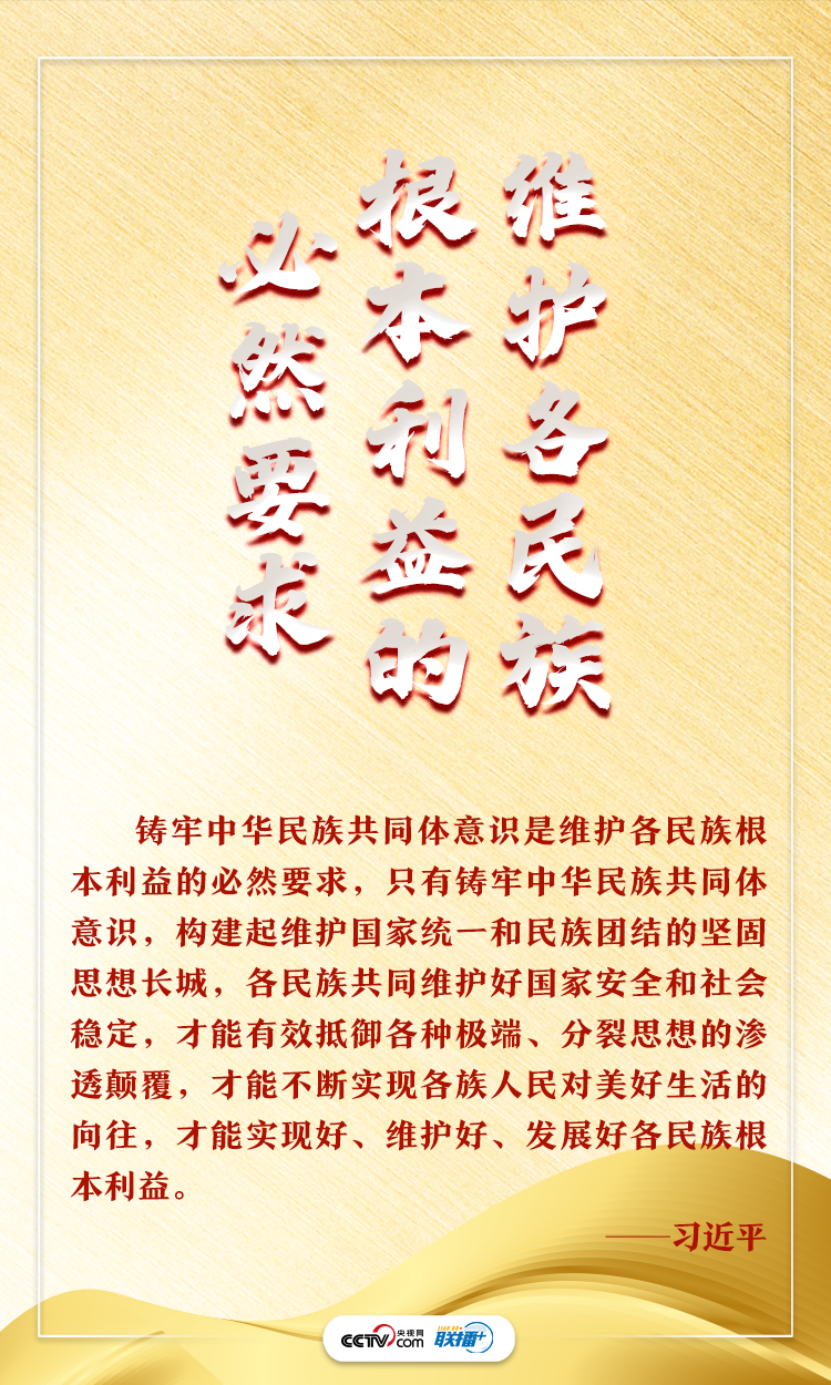 铸牢中华民族共同体意识总书记这些话字字千钧