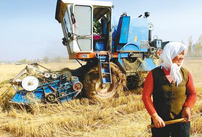 灵武市梧桐树乡组织的农机服务队在